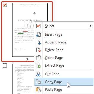 how to copy and paste a pages document